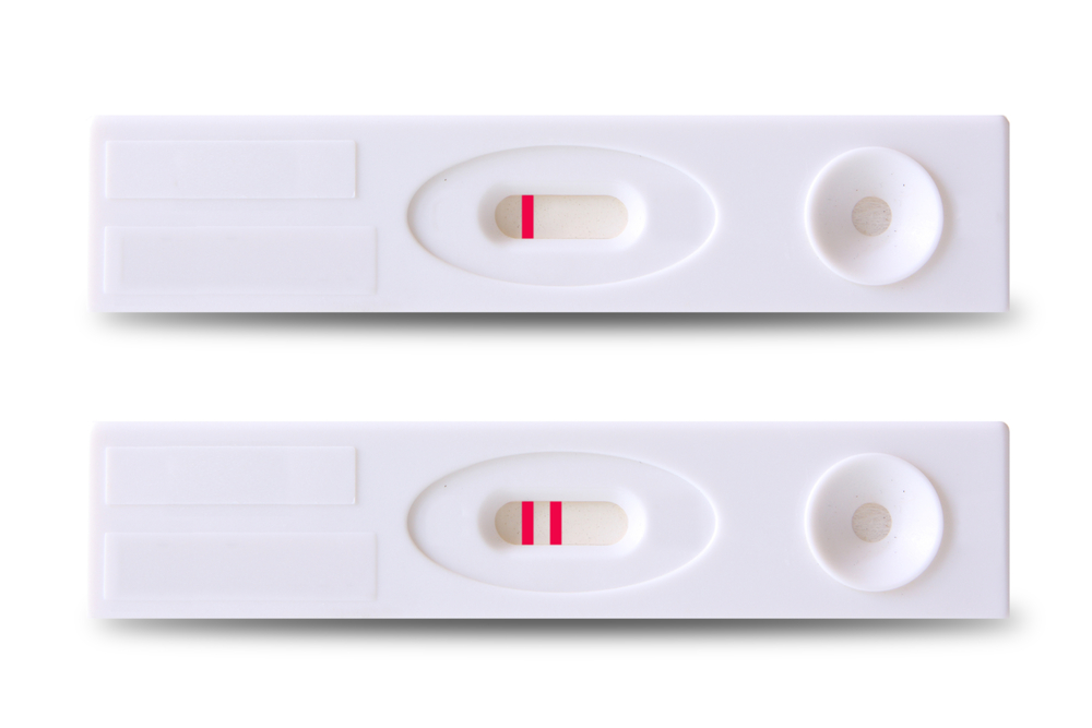 how does pregnancy test work