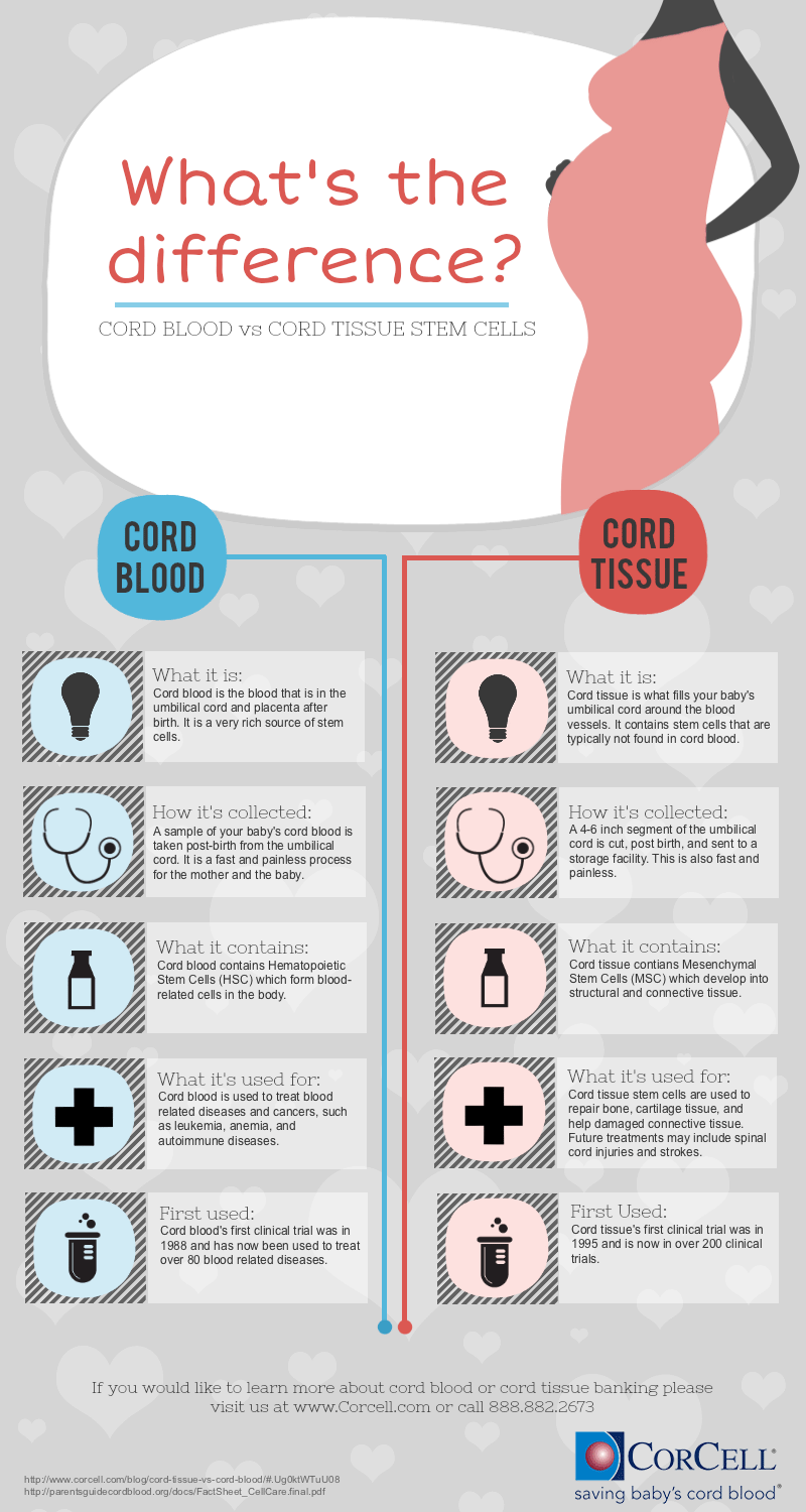 Difference between cord blood and cord tissue